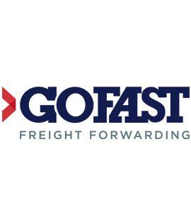 GOFAST GROUP (filiale de AIGLE AZUR)